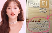 """Biến Kbiz: Chị gái tung nhật ký chứng minh nữ thần Naeun không bắt nạt đồng đội nhóm April, ai ngờ hở ra chi tiết """"tự hủy"""""""