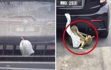 """Treo sầu riêng ngoài ô tô để tránh ám mùi, chủ xe nào ngờ gặp phải cái kết """"cứng họng"""": Bài học nhớ đời từ nay về sau!"""