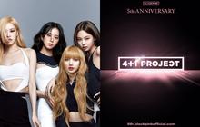 """BLACKPINK """"thả thính"""" về dự án kỷ niệm 5 năm debut, fan đoán có thêm… thành viên thứ 5?"""