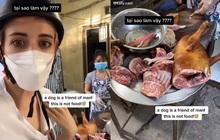 Lên án chuyện ăn thịt chó ở Việt Nam, cô gái nước ngoài cho biết bị dân mạng công kích đến mức phải bỏ về nước?