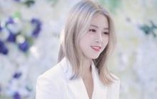 """Góc ngược đời: Rõ ràng là khen visual """"gà cưng"""" ITZY nhưng nhân viên JYP lại bị """"chỉ trích"""" lươn lẹo?"""