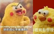 """Meme chú gà """"Còn miếng lương tâm nào không?"""" gây sốt MXH: Gia đình """"đông dân"""", không từ Trung Quốc cũng không phải... gà!"""