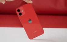 Apple dừng sản xuất iPhone 12 mini, do doanh số quá thấp