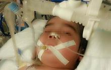 2 bé trai sinh đôi 1 tử vong, 1 bị tổn thương não nghiêm trọng chỉ vì hành động trêu đùa mà nhiều ông bố hay làm
