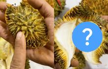 Trái sầu riêng nhỏ như trái trứng vịt, bổ ra có đúng một múi nhưng ai cũng bất ngờ với thứ bên trong
