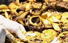 """Lão nông đào được một chiếc nồi lớn liền đập vỡ để lấy 20kg vàng, chuyên gia """"thót tim"""": Ông đã phạm sai lầm lớn!"""