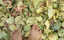 Hàng trăm quả dưa hấu bị giẫm nát, hỏi ra mới biết nguyên nhân thực sự phía sau