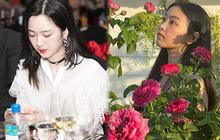 Dàn ái nữ của sao Việt: Con gái Quyền Linh style đối lập nhau, bảo bối nhà Trương Ngọc Ánh lại ghi điểm với vẻ đẹp khác biệt