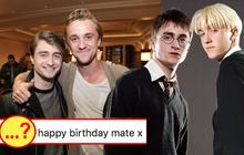 """20 năm rồi mà """"Harry Potter"""" Daniel Radcliffe vẫn bị nam thần Slytherin cà khịa, mối thù 2 nhà lại nhen nhóm!"""