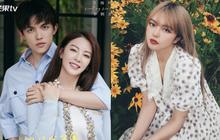 """2 cặp đôi hot nhất Cbiz hôm nay: """"Song Hye Kyo Trung Quốc"""" hẹn hò mỹ nam kém 8 tuổi, tình cũ La Chí Tường còn """"khét"""" hơn"""