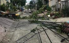 TP.HCM: Xe container kéo ngã hàng loạt cột điện trên đường, hơn 100 hộ dân bị mất điện