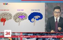 """Tranh cãi BTV của VTV ví von """"não người"""" - """"não thú"""" để cà khịa những trường hợp vi phạm quy định giãn cách"""