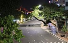 Ảnh: Những con phố 'lặng thinh' trong ngày đầu Đà Nẵng lập nhiều chốt kiểm tra sau 18h