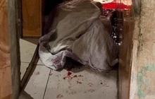 Nghệ An: Người đàn ông bị chém gần lìa đầu khi vào can ngăn ẩu đả