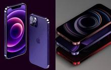 """Rò rỉ concept iPhone 13 màu tím cực sang chảnh, nhìn là muốn """"chốt đơn"""" ngay!"""
