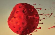 """4 """"lá chắn thép"""" giúp thế giới ngăn chặn đại dịch Covid-19"""