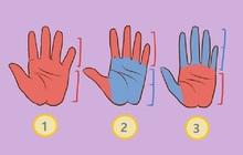 Quiz: Dáng bàn tay của bạn như thế nào? Điều này cũng có thể đọc vị rất nhiều điều về tính cách và cả nghề nghiệp thích hợp của mỗi người