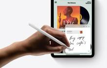 Vì sao iPad mini rất nhỏ gọn lại có giá đắt hơn iPad 9?