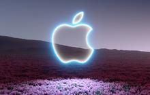 Apple bị kiện tập thể với cáo buộc tiếp thị gian dối và lừa đảo đối với các vấn đề về màn hình của MacBook M1