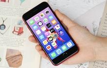 """Đang tìm điện thoại tầm trung chất lượng thì đây là 5 gợi ý """"chuẩn chỉnh"""" từ The Verge"""