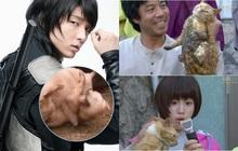 """4 phim Hàn bị chỉ trích vì ngược đãi động vật: Căng nhất là màn """"chọi chó"""" ở bom tấn của Lee Jun Ki"""