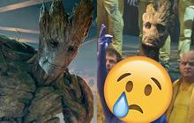 """Hóa ra chàng Groot trong Marvel """"có thật"""" ở hậu trường nhưng trông quá sợ, dàn diễn viên nhìn mà không """"sang chấn"""" thì quá nể!"""