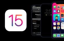Đây là những dòng iPhone có thể cập nhật lên iOS 15