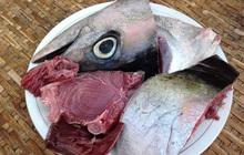 """4 bộ phận của cá chứa đầy độc tố cực mạnh, người bán hàng sẽ chẳng bao giờ ăn mà chỉ muốn """"bán tống bán tháo"""""""