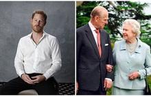 Hoàng tử Harry bất ngờ bị dư luận ném đá dữ dội vì một lời nhận xét về vợ chồng Nữ hoàng Anh