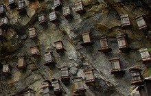 """Nhìn thấy vô số """"quan tài"""" lơ lửng trên vách núi, nhóm thanh niên sợ hãi quay đầu bỏ chạy nhưng được 1 đoạn thì dừng bước"""