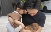 """Cường Đô La vừa đón thêm thành viên mới bị bỏ rơi ngoài công viên, ái nữ Suchin mới 1 tuổi đã có """"em"""" rồi!"""