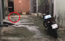 Nóng: Nghi án kẻ ngáo đá chém người đàn ông lìa đầu ở quận 7