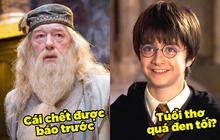 5 giả thuyết Harry Potter điên cuồng, đen tối mà rất logic: Cái chết của Dumbledore được dự đoán trước 5 năm, tuổi thơ Harry có vấn đề?