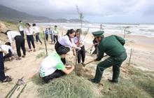 Hành trình trồng 1 triệu cây xanh cho Việt Nam sẽ cán đích trong năm 2020