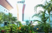 Không cần bay tới Singapore, ngay tại Quảng Ninh cũng đã có sân bay sinh thái đẹp như resort, xanh không kém Changi