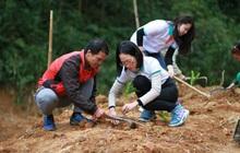 Người trẻ trên hành trình trồng cây bảo vệ đất và người