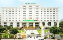 Trường Đại học Đông Á: 3 phương thức xét tuyển ở 33 ngành đào tạo