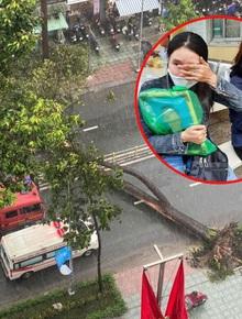 Gia cảnh đáng thương của nạn nhân bị cây xanh đè tử vong ở Sài Gòn: 2 vợ chồng cùng thất nghiệp do Covid-19, đứa con đầu chưa đầy 4 tuổi