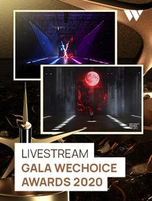 Livestream Gala WeChoice Awards 2020: Nơi những điều diệu kỳ nhất được tôn vinh