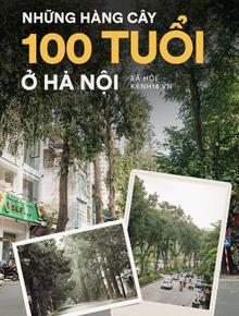 Những tuyến phố có hàng cây xanh được quy hoạch 100 năm trước ở Hà Nội giờ ra sao?