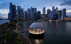 6 điểm đến đáng mong đợi tại Singapore cho những chuyến đi sau đại dịch