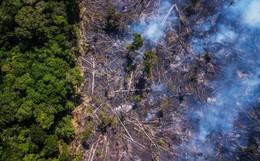 The New York Times: Phân tích ảnh vệ tinh đã chỉ ra chính xác thủ phạm gây thảm họa cháy rừng tại Amazon