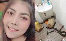 """Bước vào nhà vệ sinh, người phụ nữ hốt hoảng phát hiện """"bé Na"""" đang nằm cuộn tròn chờ mình để tấn công"""