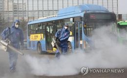 Hàn Quốc: Thêm 1 người tử vong, số người nhiễm virus corona tăng hơn gấp đôi chỉ sau 1 ngày nhưng dân Seoul vẫn bất chấp đi biểu tình