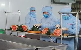 Dịch Covid-19: Xuất hiện bún dưa hấu siêu lạ, vừa ra lò đã xuất khẩu sang Hàn Quốc