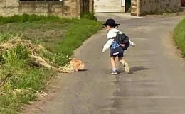 Con trai ngày nào cũng đi học muộn, còn nói dối trắng trợn với giáo viên, bà mẹ quyết tâm đi rình thì phát hiện sự thật ngã ngửa