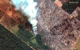 Thảm họa của thế kỉ 21: Rừng Amazon có thể tự dập lửa nhưng bị chính con người 'bức tử' và sự trả thù của thiên nhiên sẽ vô cùng tàn khốc