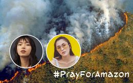 Giới trẻ Việt Nam: Bạn hãy đừng nghĩ cháy rừng Amazon là điều gì đó quá xa xôi!