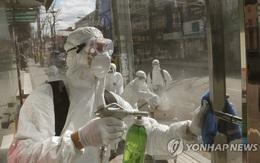 Hàn Quốc: Thêm 3 trường hợp thiệt mạng vì virus corona, tăng kỷ lục 571 người nhiễm mới trong ngày, tổng cộng 2337 người nhiễm bệnh