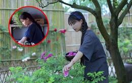 """Giữa lùm xùm """"đạo nhái"""" bị netizen Trung lên án, chủ nhân kênh Bếp Trên Đỉnh Đồi khoá tài khoản cá nhân và có phản ứng gây bất ngờ"""